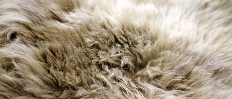 羊毛被好吗?晚上睡觉睡不好,换床羊毛被准没错