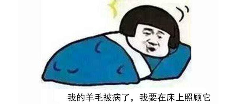 """""""睡什么睡,起来嗨!""""盖着一床冬被羊毛被,并不想起床嗨!"""
